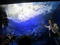 the best attitude 06485 8b14d おんねゆ温泉「北の水族館」 - ブログ記事 - 旅のコミュニティ